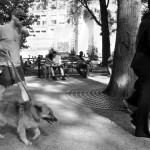 Walking Dog, Sipping Drink by Larry E. Fink